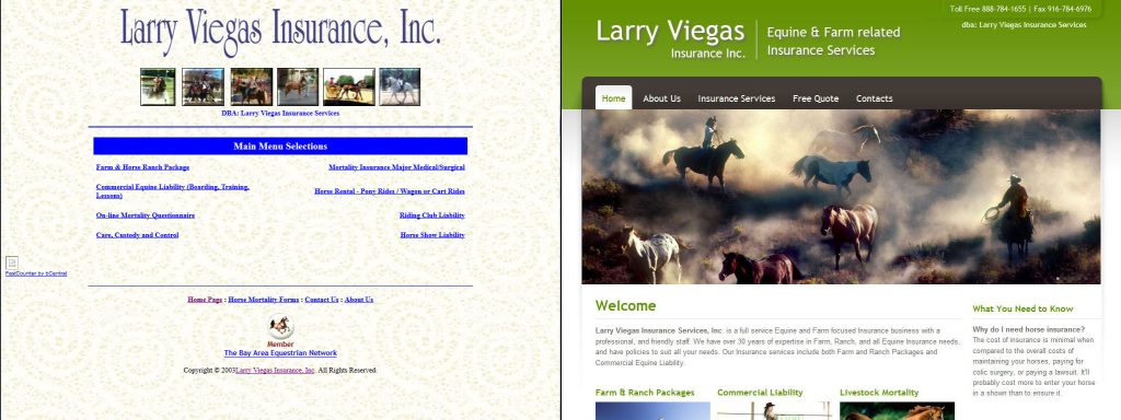 Larry Viegas Insurance